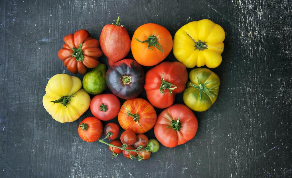 tomaten kweken